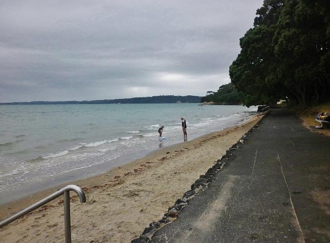 Point Chevalier beach looking north