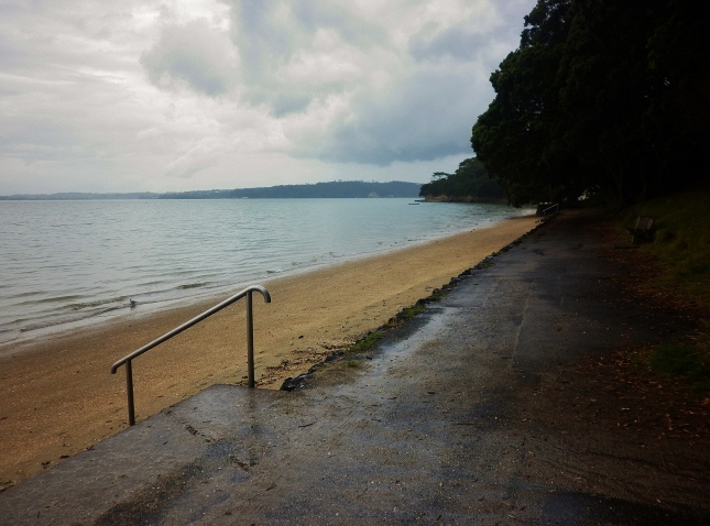 A rainy afternoon at Pt Chevalier beach today