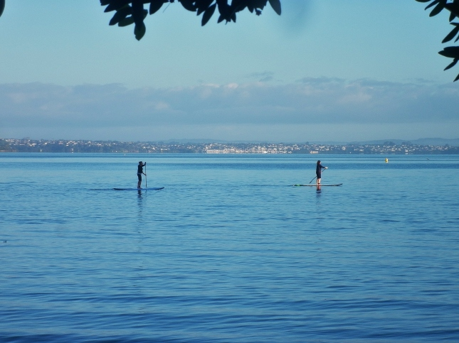 Autumn paddle boarders at Pt Chevalier beach