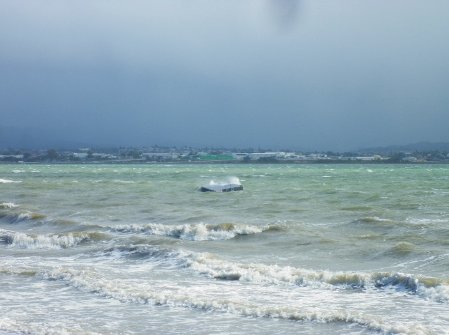 A stormy day with strident westerly onshore winds kept most swimmers away from Pt Chevalier beach on April 13th
